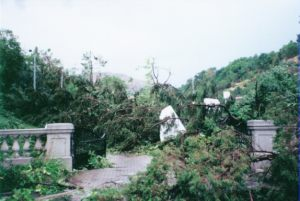 16_tornado_damage_in_memory_grove_park_in_1999